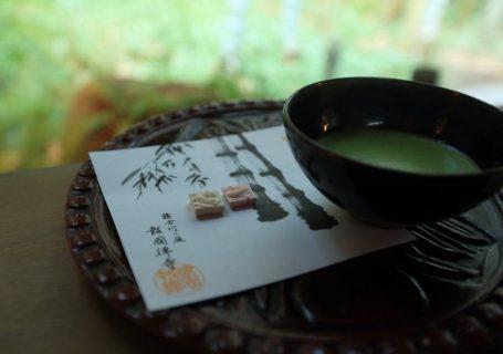 Matcha Tee Erfahrung