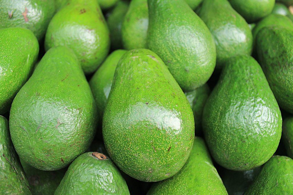 avocado-zuckerfreie-ernährung-diät-kur