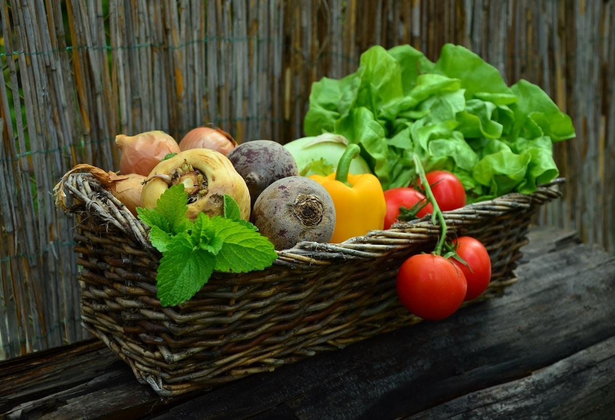 Erlaubte Lebensmittel in der Stoffwechselkur