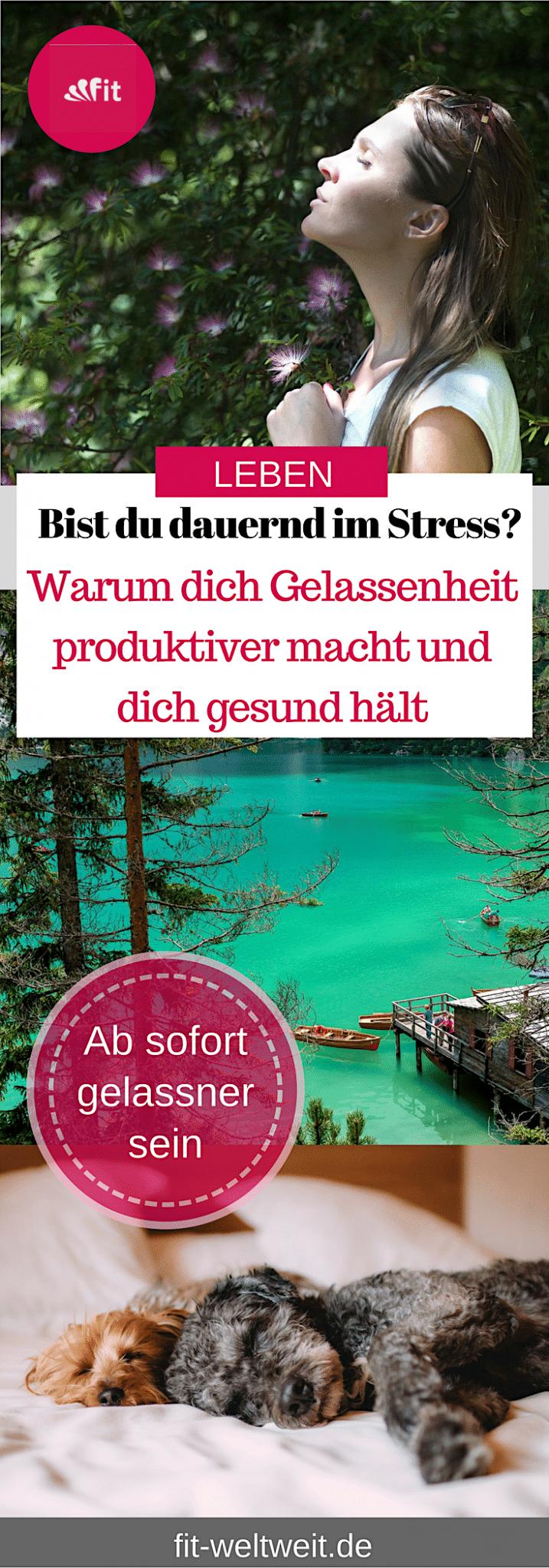 Warum dich Gelassenheit produktiver macht und gesund hält. Fühlst du dich häufig total im Stress und machst dich oft total verrückt. #Gelassenheit lernen und gelassen mit Stress umgehen. Mit der richtigen #Stressbewältigung kannst du mit Gelassenheit entgegenwirken. #stressfrei leben. Besonders, wenn du viel arbeitest. #Arbeit Hole dir Motivation und beginne deine Tage stressfreier mit einer positiven Einstellung. #stress #stressabbau #entspannt #entspannung