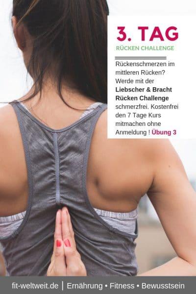 #RÜCKENSCHMERZEN #MITTLERER #RÜCKEN #ÜBUNGEN Rückenschmerzen im mittleren Rücken oder nachts? Werde mit der Liebscher & Bracht Rücken Challenge schmerzfrei. Kostenfrei den 7 Tage Kurs mitmachen ohne Anmeldung ! Übung 3 Video