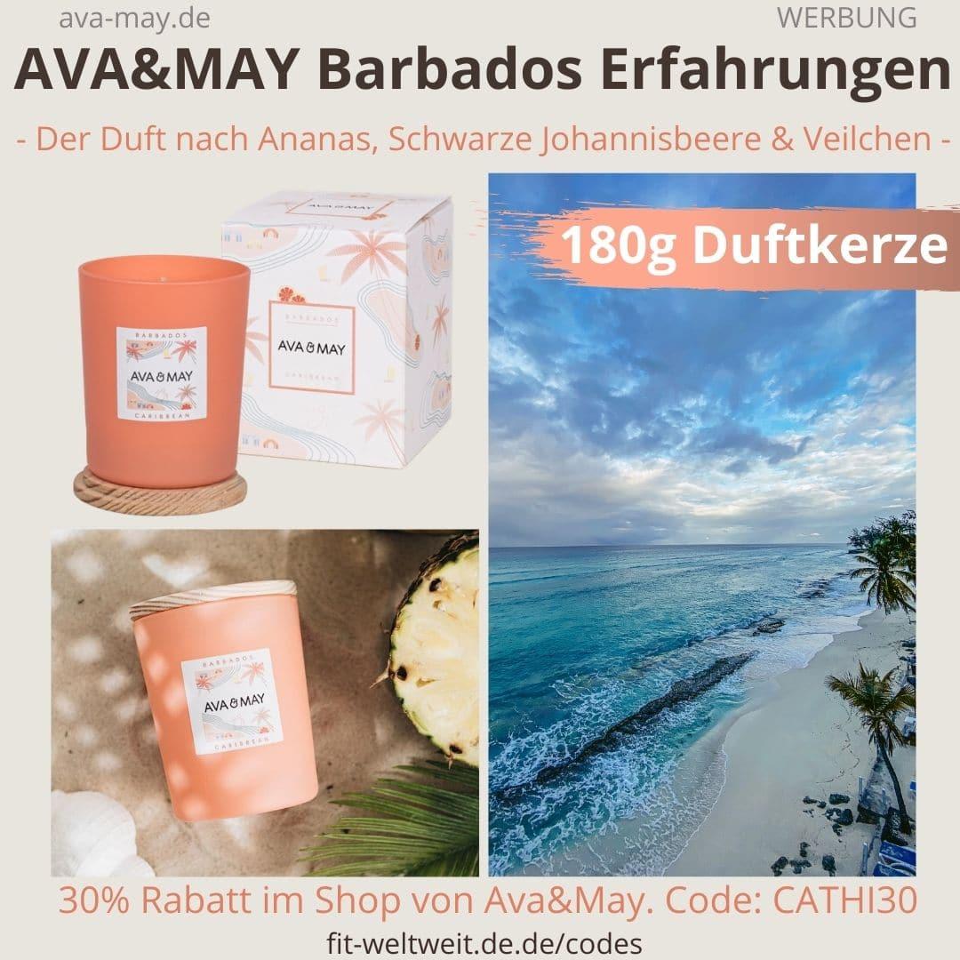 AVA and MAY Barbados 180g Duftkerze Caribbean