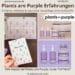 PLANTS ARE PURPLE ERFAHRUNGEN Kosmetik Skincare Bewertung Produkttest